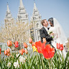 2008 Lambson (SLC Temple) : 2 galleries with 808 photos