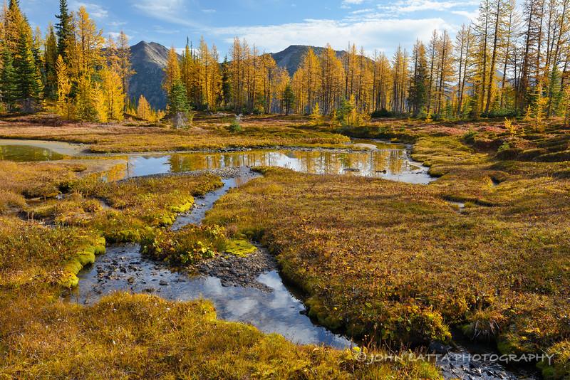 Autumn Reflection