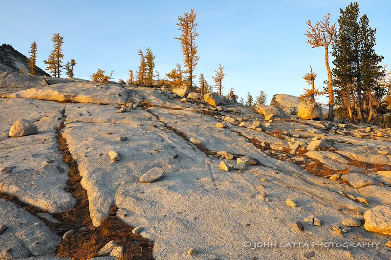 Erratics on Granite Slab