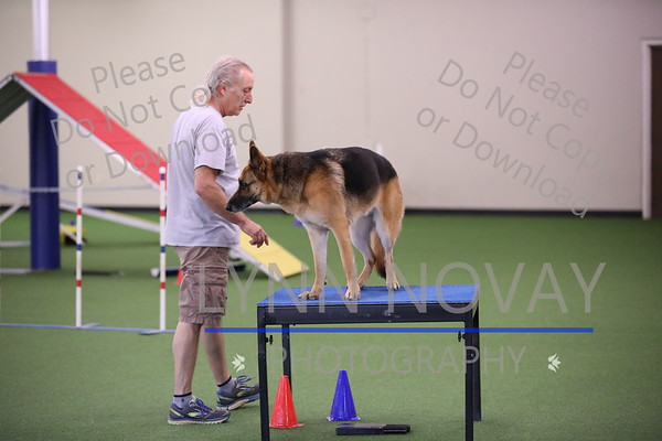 WAGD Agility League 7-28-2017
