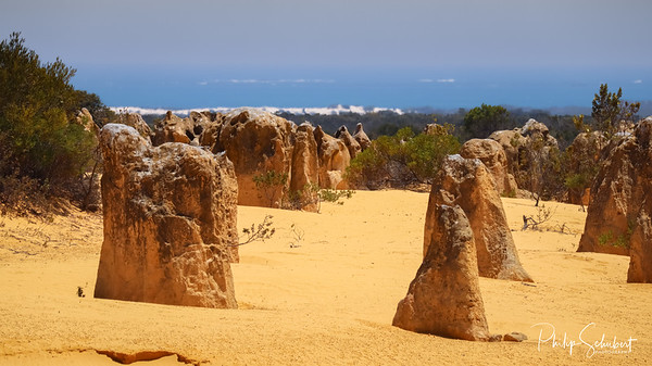 Landscape view of the limestone pinnacles in the Nambung National Park, Cervantes, Western Australia.