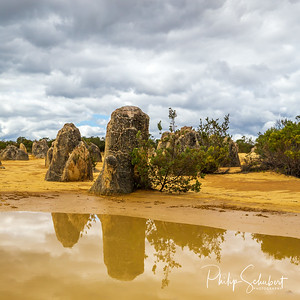 View of the limestone pinnacles with a reflection in a pool of water in the Nambung National Park, Cervantes, Western Australia.
