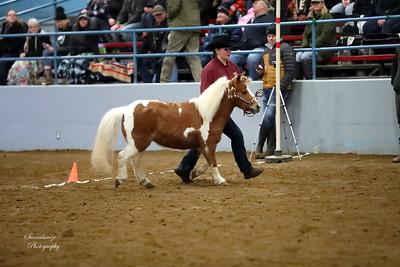 AV0I0006 Cheyenne Styres (5)
