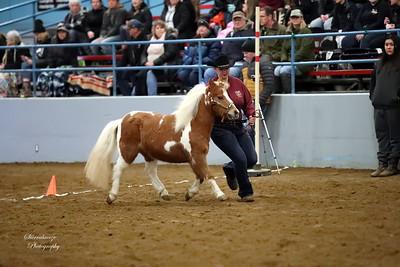 AV0I0006 Cheyenne Styres (1)