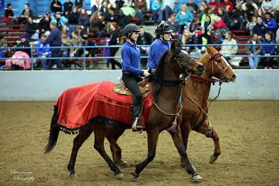 C08Q1076 Rodewald Maddee, Louwien Cheyenne (1)