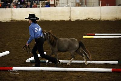 _U8K2844 Coleman Cheyenne (20)