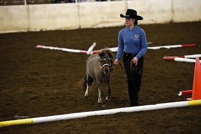 _U8K2844 Coleman Cheyenne (13)