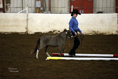 _U8K2844 Coleman Cheyenne (1)