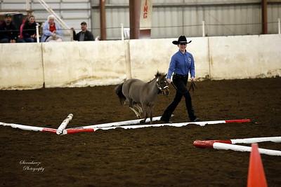 _U8K2844 Coleman Cheyenne (9)
