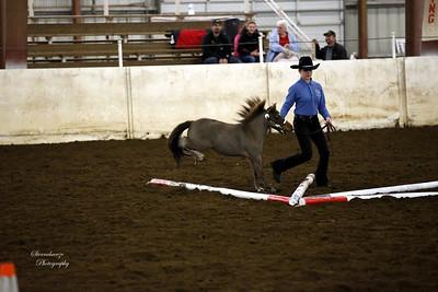 _U8K2844 Coleman Cheyenne (6)