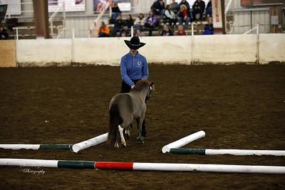 _U8K2844 Coleman Cheyenne (16)