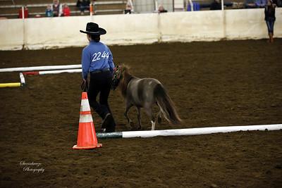 _U8K2844 Coleman Cheyenne (14)