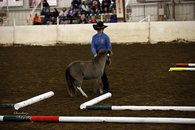 _U8K2844 Coleman Cheyenne (15)