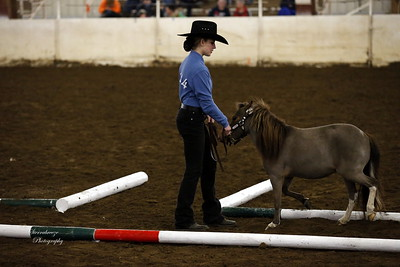 _U8K2844 Coleman Cheyenne (19)