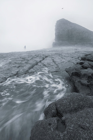 Figure In The Mist nashpoint  039102017