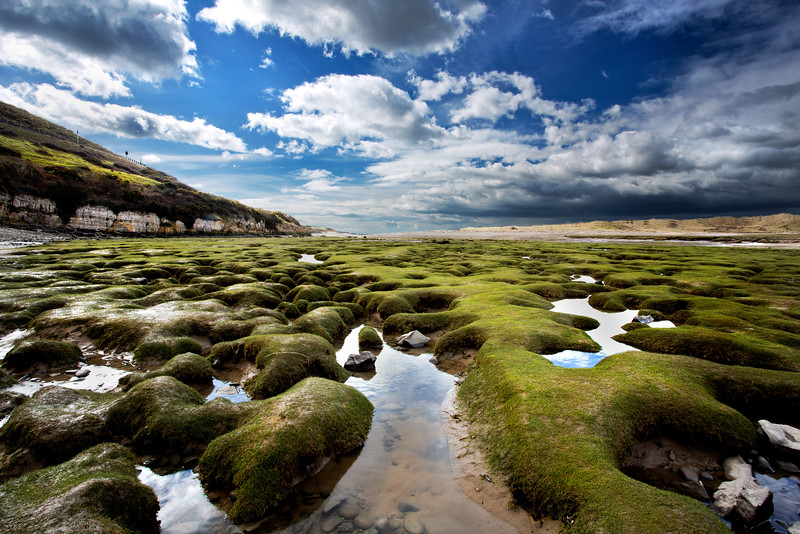 OGMORE RIVER AT LOW TIDE BY SCOTT WARNE