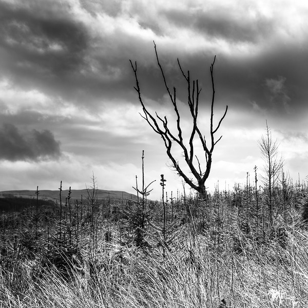 BRECON BEACONS 2_BLACK AND WHITE_LANDSCAPE_SCOTT WARNE_001102017