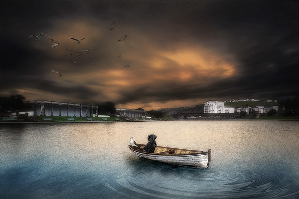 """Friends"" - The Knap Lake, South Wales By Scott Warne"