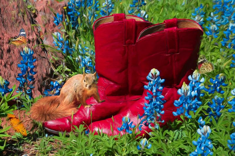 Texas Garden Boots 4361-FA-2089