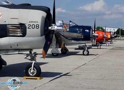 PUNTA GORDA WARBIRDS ON GROUND