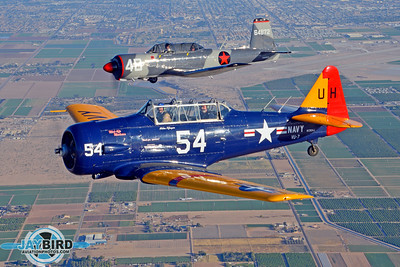 Mooney Caravan Gunfighters Formation Clinic