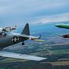 DC Flyover-0027