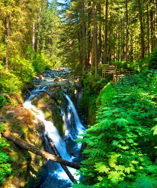 7344 Sol Duc Falls