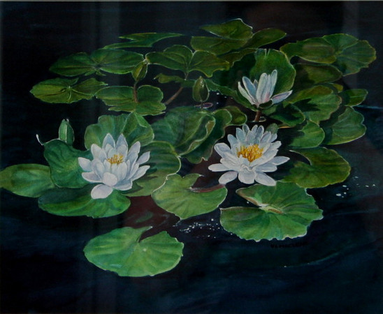 Water Lilies<br /> watercolour<br /> <br /> On display at A MATTER OF TASTES<br /> <br /> (image slightly distorted-photo taken through glass)