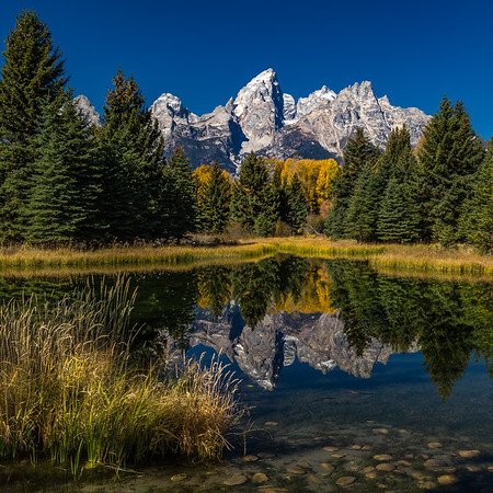 SEASON ACCENTS: SCHWABACHER'S LANDING, GRAND TETON NATIONAL PARK, WYOMING