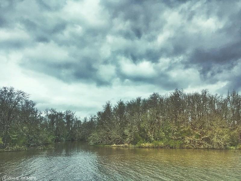 Fern Ridge Lake at Perkins Peninsula