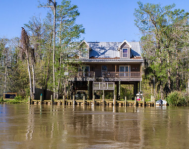 Louisianna Swamp post Hurricane Sandy.