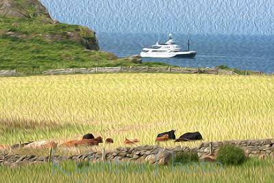 Dunagoil, Isle of Bute, Scotland