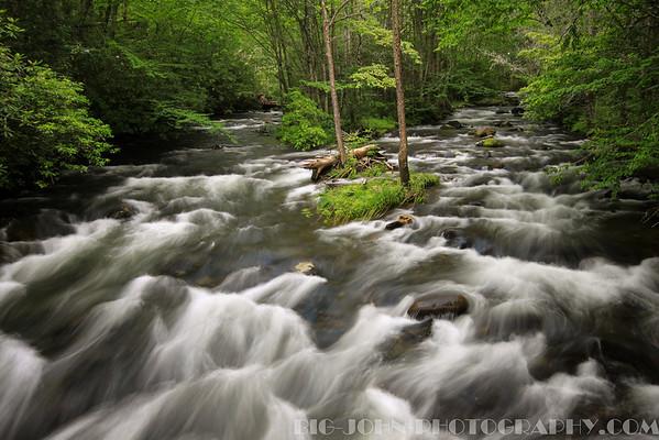 Forney Creek at Bear Creek trail.
