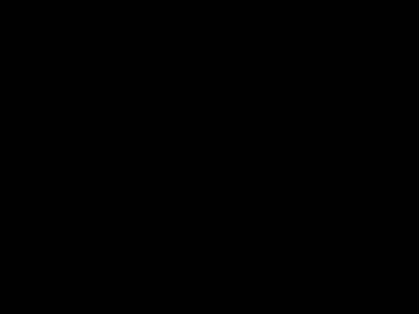 This is a short WMV movie. Music by William Orbit (silent signals)