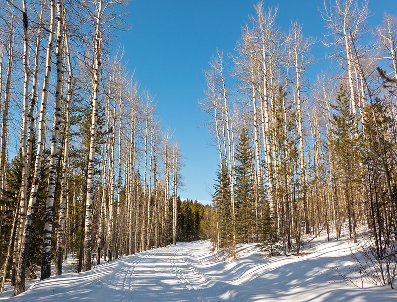 Conditions on Iron Springs were a bit more variable, but generally very good.