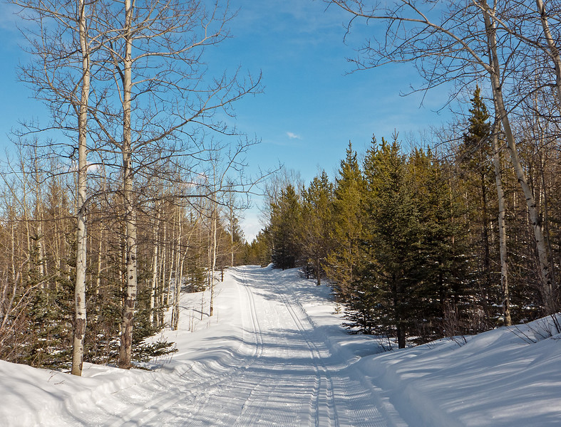 Loggers Loop- enjoyable skiing and excellent snow conditions, as usual.