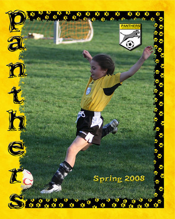 Trading Cards - Spring 2008