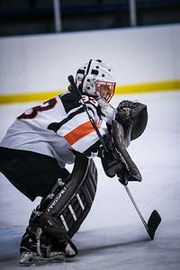 _DLS4630GHockey1stPlayoff19