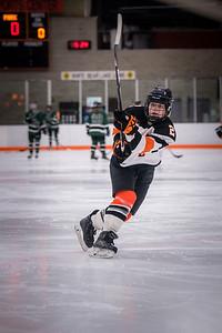 DSC_3065GirlsHockeyVPark