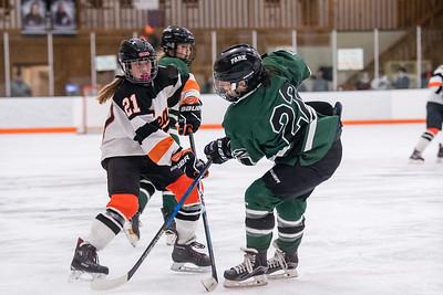 DSC_3141GirlsHockeyVPark