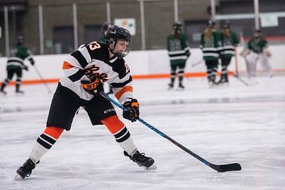 DSC_3060GirlsHockeyVPark