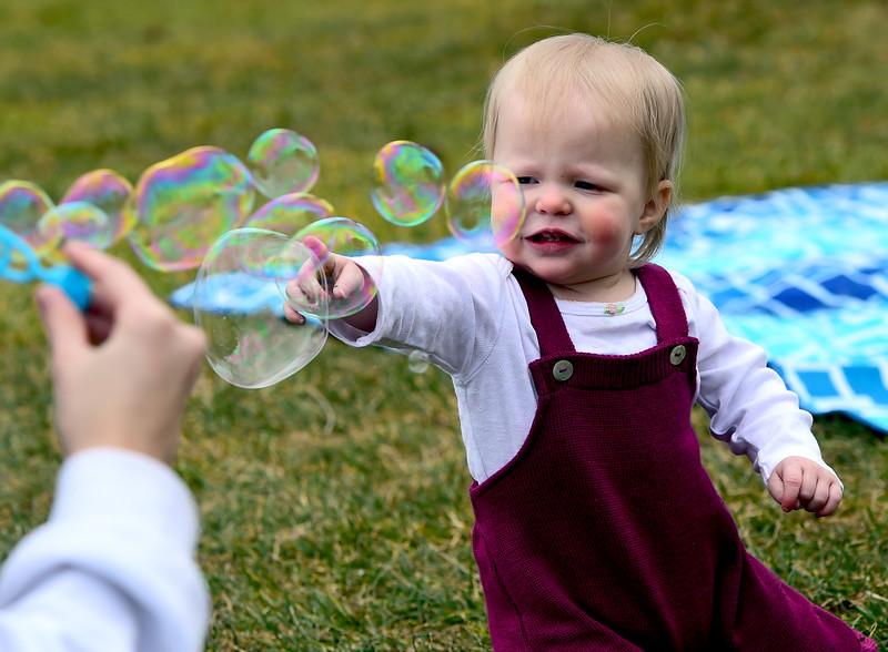 Bubble Baby Wild Art