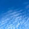 Winter Blue Cloudscape—Cirrocumulus undulatus