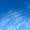 Winter Blue Cloudscape—Cirrocumulus undulatus