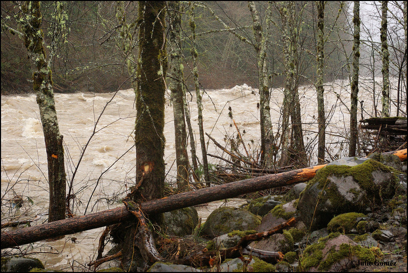 Sandy River Flood