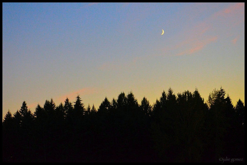 Waxing Cresent Moon and Sunset