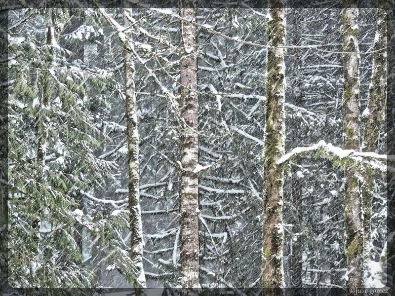 Snowy East Wind