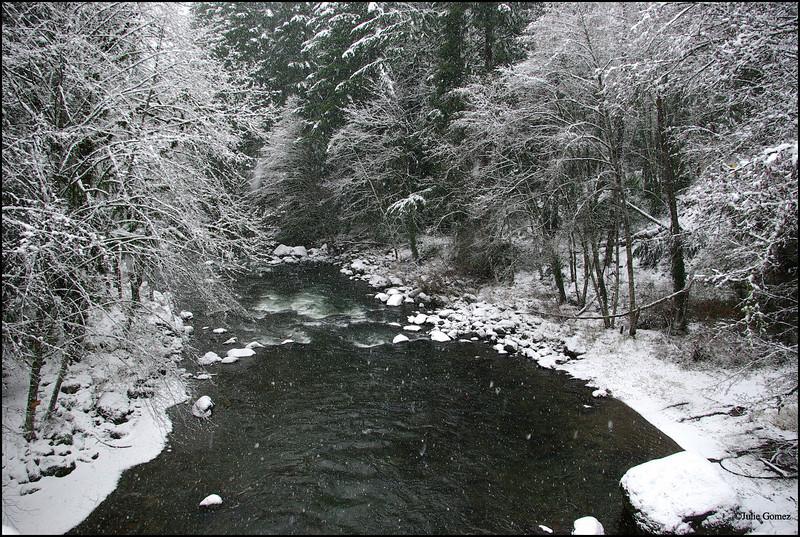February Snowstorm