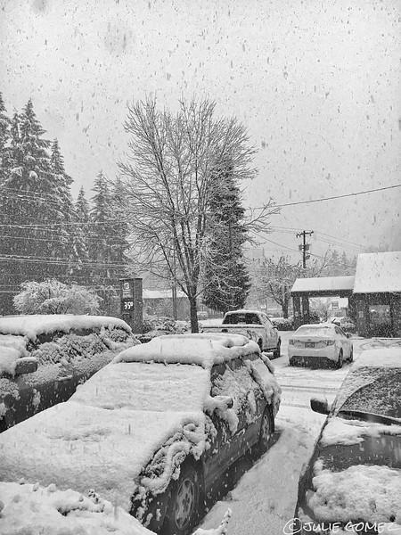 Snowstorm Round One