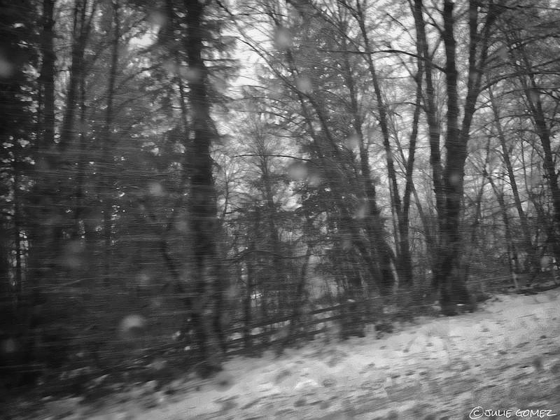 Roadside Drifts